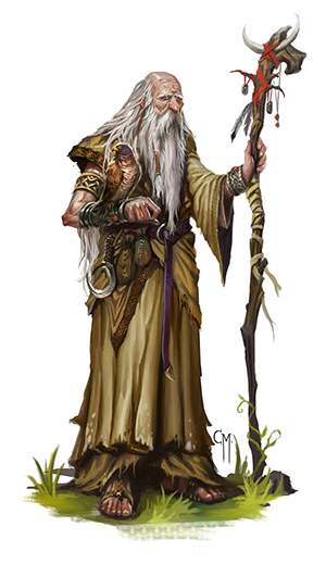 elder druid